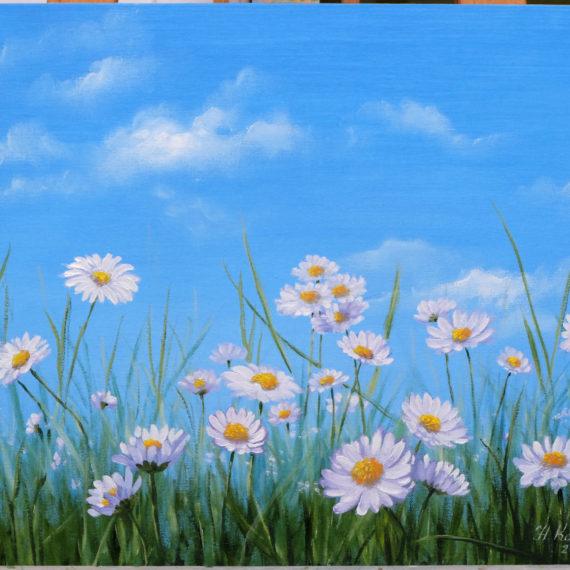 Картина маслом «Ромашковое поле»